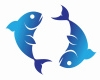 Daily Free Pisces Horoscope